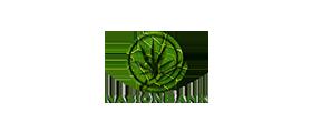 Nasion Bank