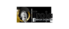 Ochrona Troja