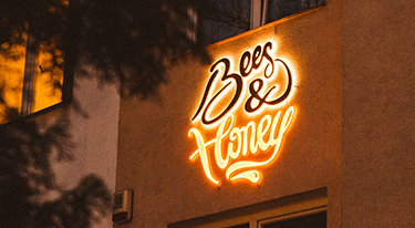 Twórczywo, czyli co pszczoły i ledony mają ze sobą wspólnego